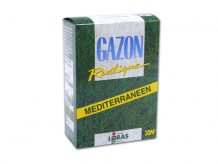 GAZON MEDITERRANEEN