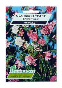 CLARKIA ELEGANT DOUBLE VARIE