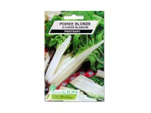 POIREE BLONDE A CARDE BLANCHE